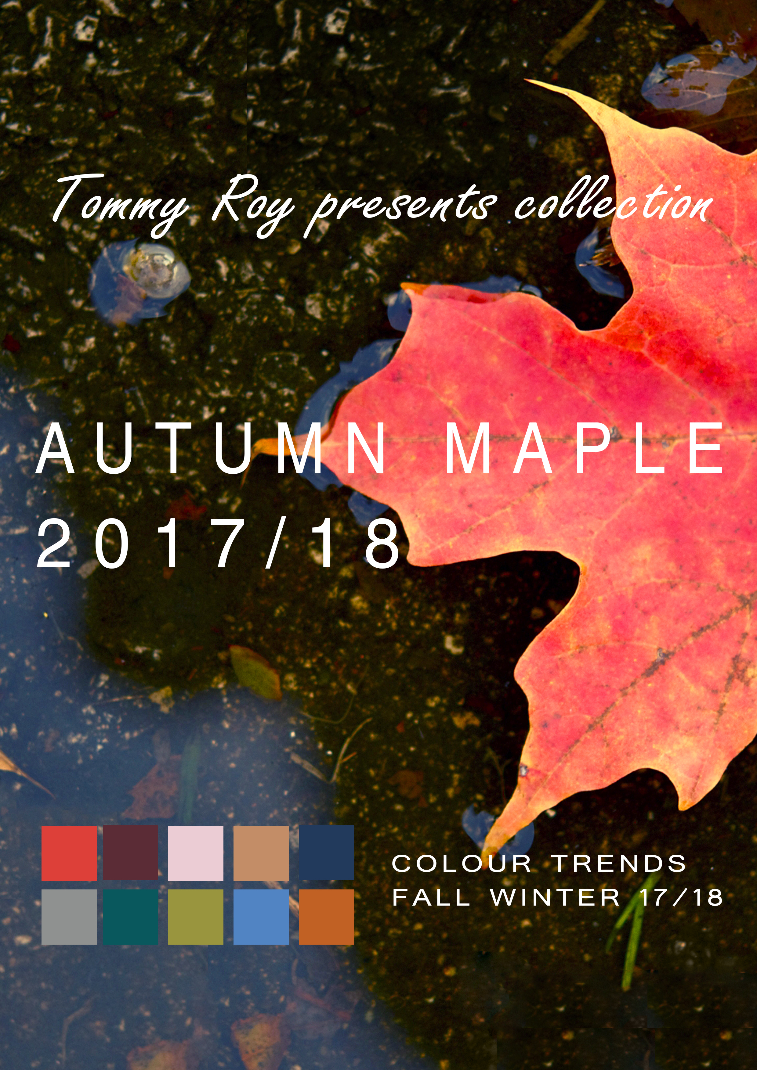 NEW COLLECTION AUTUMN MAPLE 2017/2018